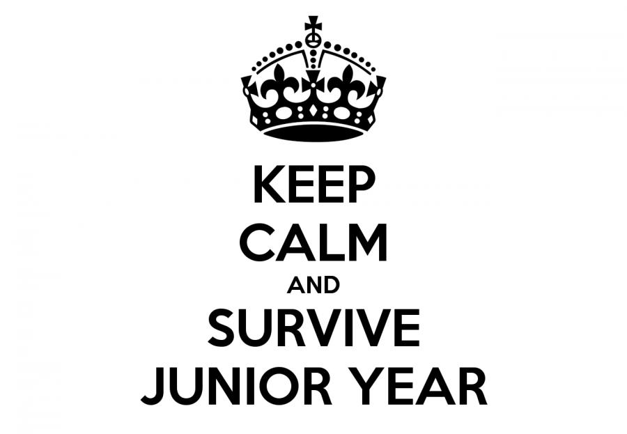 Dear+Rising+Junior