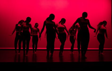 A different kind of dance show: 2019 Israeli dance showcase