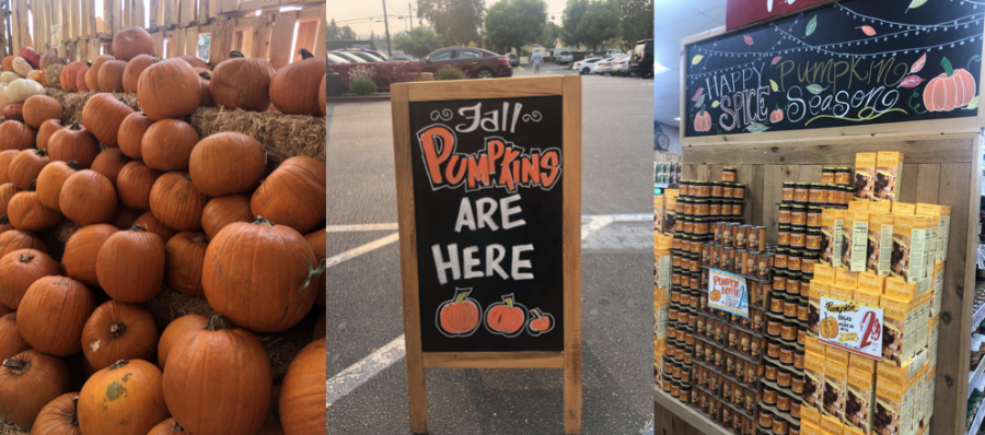 Trader Joes in Chatsworth is decorated for fall